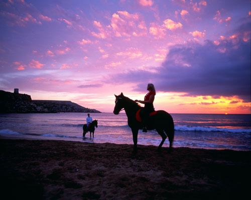 horse riding malta