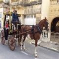 Rigal Ħaj 2014 | 005