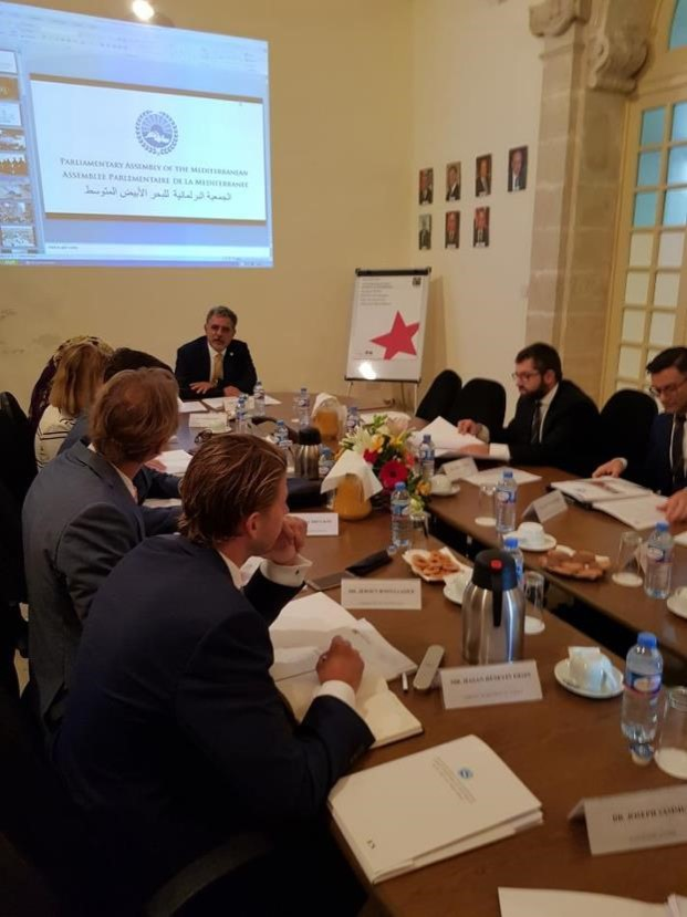 PAM missions and international consultations shared with Diplomatic Corps in Malta