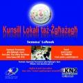 Kunsill Lokali taż-Żgħażagħ